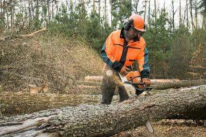 Bosbouw groenvoorziening kleding